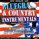 Nashville Session Musicians - An hour of bluegrass & country instrumentals