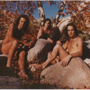 The Rowans