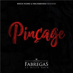 FABREGAS PINÇAGE MP3 TÉLÉCHARGER