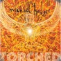 Album Torched de Michael Hedges