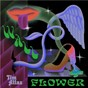 Album Wallflower de Tim Atlas