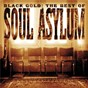 Album Black gold: the best of soul asylum de Soul Asylum