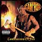 Album Confessions of fire de Cam'ron