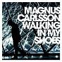 Album Walking in my shoes de Magnus Carlsson