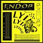 Album Lying (feat. lauren ackie) de Endor