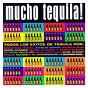 Compilation Mucho tequila avec Manolo Tena / Seguridad Social / Mikel Erentxun / Los Secretos / Javier Alvarez...