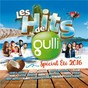 Compilation Les hits de gulli spécial été 2016 avec Big Time Rush / Kendji Girac / Daisy / Max / Deorro...