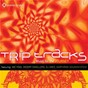 Compilation Trip tracks: music for the journey avec DJ Drez / Earthrise Soundsystem / Red Buddha / Desert Dwellers / Prem Joshua...