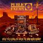 Album What You Gonna Do When The Grid Goes Down? de Public Enemy