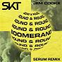 Album Boomerang (round & round) (serum remix) de Jem Cooke / DJ S K T