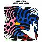 Album Need you now de Cut Copy