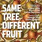 Compilation Same tree different fruit (12 songs of abba) avec Steve Gadd / Anders Wihk / Svante Henryson / Robben Ford / David Sanborn