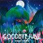Album Magic valley de Goodbye June