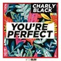 Album You're perfect de Charly Black