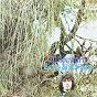 Album Zero She Flies de Al Stewart