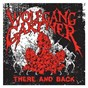 Album There and back de Wolfgang Gartner