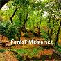 Album Forest memories de Rain Sounds