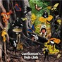 Album Down to Earth de Gentleman's Dub Club