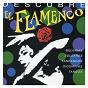 Compilation Descubre el flamenco avec Sernita de Jérez / La Perla de Cadiz / Pepe de la Matrona / Pericón de Cádiz / Paco Cepero...