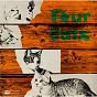 Album Four cats de Four Cats