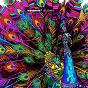 Compilation Watergate 07 (compiled by lee jones) avec Acid Pauli / Lee Jones / Flowers & Sea Creatures / Andri / Mymy...