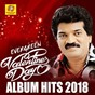 Compilation Evergreen valantinesday album hits 2018 avec Saleem / M G Sreekumar / Saleem Kodathoor / Shafi / Thajudheen...