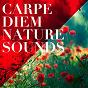 Compilation Carpe diem nature sounds avec Alessio de Franzoni / Nature Sounds / Bill Fold / Sounds of Nature / Michael Hamilton...