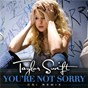 Album You're not sorry (csi remix) de Taylor Swift
