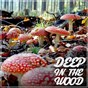 Compilation Deep in the wood avec Kiko & Dave Davis / Raz Ohara / Ben Hoo / Christophe Dallaca, David Henrard / Dave Davis...