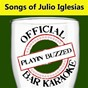 Album Official bar karaoke: songs of julio iglesias de Playin' Buzzed