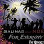 Album For eternity (the remixes) de Salinas / Noé