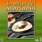 Album Colección de oro: lo mejor del mariachi, vol. 3 de Mariachi Nuevo Tecalitlán / Mariachi México / Mariachi Guadalajara