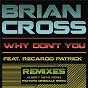 Album Why don't you (remixes) de Brian Cross