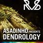 Compilation Asadinho presents dendrology avec Asadinho / Lana del Rey / Onur Ozman / Alex Neivel, Pat Heart / Harlem Knights...