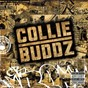 Album Collie buddz de Collie Buddz
