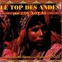 Album Le top des andes (les plus grands thèmes à la flûte des andes) de Los Koyas