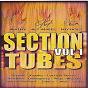 Compilation Section tubes zouk, vol. 1 avec Sandrine Baillard / Ali Angel / Kaysha / Teeyah / Damogueez...