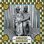 Album 1990-1995 : le meilleur des années maliennes de Amadou & Mariam
