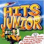Album Hits junior de DJ Team