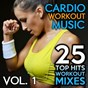 Compilation 25 top hits, vol. 1 (workout mixes) avec Marisandra / DJ Loophole / Veronica Jax / Dr. Kid / Fellatronix...