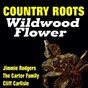 Compilation Country roots wildwood flower avec Jules Verne Allen / The Carter Family / Jimmie Rodgers / The Pickard Family / Nelstone's Hawaiians...