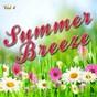 Album Summer breeze, vol. 4 de Soundsense
