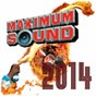 Compilation Maximum sound 2014 avec Natel / Christopher Martin / Jah Cure / Loyal Flames / Masicka...