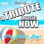 Album A tribute music now: best of... the beach boys de The Tribute Beat