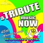 Album A tribute music now: 45th anniversary tribute to woodstock de The Tribute Beat