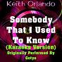 Album Somebody that I used to know (karaoke version) (originally performed by gotye) de Keith Orlando