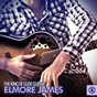 Album The king of slide guitar: elmore james de James Elmore