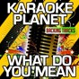 Album What do you mean (karaoke version) (originally performed by justin bieber) de A-Type Player