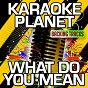 Album What do you mean (karaoke version) (originally performed by justin bieber) de A-Type Player