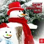 Compilation Snowy Christmas Night, Vol. 1 avec Don Ho / Johnny Preston / Lee Denson / Shakin' Stevens / Debbie Reynolds, Donald O'connor...